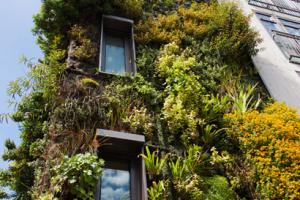 Research Article : Green Tourism Certifications in the UAE - Why to implement?